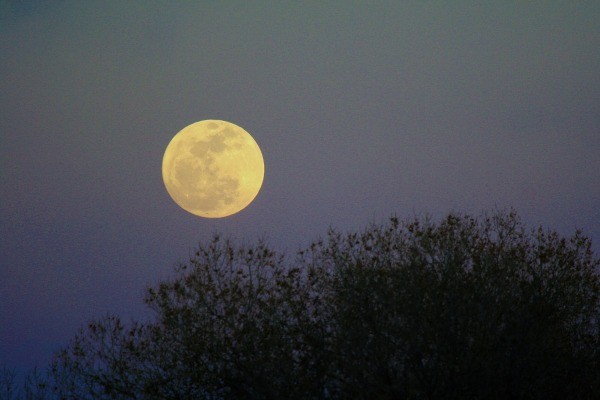 Image result for full moon rising