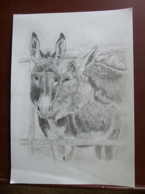 Whispering Donkeys by Christine at Garybuie's Blog